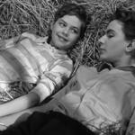 Culture et cinéma : Les amitiés particulières