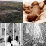 Vietnam : 40 ans après, l'agent Orange de Monsanto fait encore d'horribles ravages !