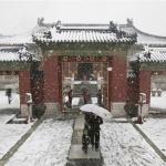 Pour rappel : De la neige artificielle à Pékin