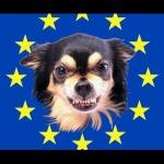 Les chiens de garde de l'Union Européenne