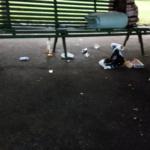 Environnement : Genève, Parc des Eaux-Vives, quand les porcs sont de sortie le week end !