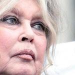 """Brigitte Bardot : """"Nicolas Hulot est un vendu et un lâche !"""""""