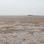 Environnement : Disparition de l'océan sur les côtes des Bahamas suite à l'ouragan Irma