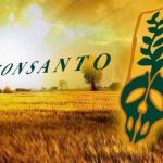 Santé publique : Monsanto rémunère des scientifiques afin de sous-estimer la toxicité de leurs produits