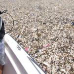 Environnement : Honduras,  les photos de la «mer de plastique» choquent défenseurs de l'environnement
