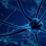 Science & Vie : Plus vous recherchez du plaisir, plus vous serez malheureux