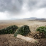 Environnement : Écocide, un crime contre l'humanité et la nature qui doit être jugé et condamné