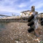 Catastrophe écologique en cours : Le Burn-out de la Méditerranée