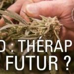 CBD : la déferlante du cannabis légal
