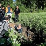 Agriculture intelligente : Les vers de terre pour remplacer le labour