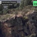 Maltraitance : Terribles images de chasse en Espagne