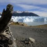 Réchauffement climatique : et si l'on pointait du doigt les vrais coupables ?
