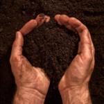 Environnement : L'argent doit être une résultante et non une finalité en soi