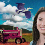 Environnement : En Suisse, tous les domaines de l'État de Neuchâtel devront passer au bio