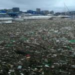 Environnement : Le port de Durban (Afrique de sud)