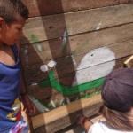 Environnement : Amar Adjili : Le jardin urbain permaculture