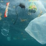 Environnement : Le Léman aussi pollué que la Méditerranée