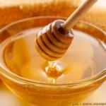 Environnement : Une abeille, une vie !