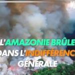 Environnement : Le poumon de la planète brûle et tout le monde semble n'en avoir rien à faire ! Fake News ?