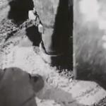 No comment : De très belles images d'archives de la télévision Suisse et une rivière du temps d'hier