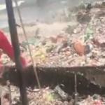 No comment : Quand les océans recrachent nos ordures !