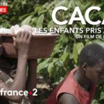 """En Côte-d'Ivoire, la forêt est passée au glyphosate, """"un médicament pour faire avancer la culture du cacao"""