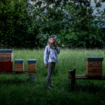 Alimentation saine : Les miels de Stéphanie