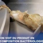 Santé publique : Des os, des vis, du plastique… retrouvés dans de la purée dans plusieurs crèches