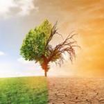 Réchauffement climatique et glaciation: Le délire total ! Le GIEC n'est qu'un Fake !