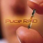 Technologie : Puce RFID, l'avenir du futur