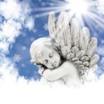 Hommage posthume à mon petit papounet