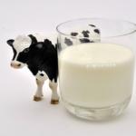 Consommation : Se passer de lait, est-ce possible dans des pays comme la France ou la Suisse ?