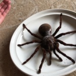 No comment : Arachnophobes, ces images ne sont pas pour vous.