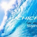"Culture & Cinéma : Chicane & Moya Brennan ""Saltwater"""
