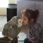 La vidéo du jour : Magnifiques moments de tendresse / Video of the day: Magnificent moments of tenderness