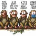 L'image du jour : Les 4 singes / Image of the day : The 4 monkeys