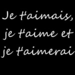 Je t'aimais, je t'aime et je t'aimerai / I loved you, I love you and I will love you (Reminder)
