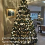 L'image du jour : le sapin de Noël made in confinement /  Image of the day : the Christmas tree made in Covid containment