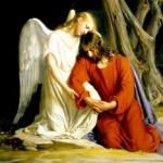 Rares Mihai Florescu : Si un ange venait te voir ce soir, que lui dirais-tu ? / Science & Life :  If an angel came to see you tonight what would you say to him ?